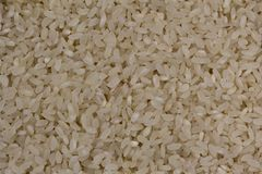 Φυσικό άσπρο ρύζι Στοκ εικόνα με δικαίωμα ελεύθερης χρήσης