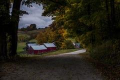 Φυσικό αγρόκτημα και άνεμος βρώμικος δρόμος - χρώματα φθινοπώρου/πτώσης - Βερμόντ στοκ φωτογραφίες με δικαίωμα ελεύθερης χρήσης