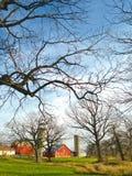 Φυσικό αγρόκτημα Στοκ φωτογραφίες με δικαίωμα ελεύθερης χρήσης