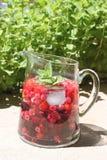 Φυσικό αρωματικό νερό στοκ εικόνα με δικαίωμα ελεύθερης χρήσης