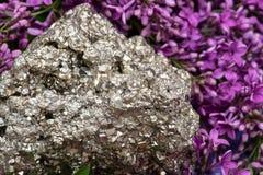 Φυσικό δείγμα συστάδων πυρίτη από το Περού που περιβάλλεται από το πορφυρό ιώδες λουλούδι στοκ φωτογραφία με δικαίωμα ελεύθερης χρήσης