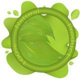 Φυσικό διανυσματικό σχέδιο λογότυπων Στοκ εικόνα με δικαίωμα ελεύθερης χρήσης