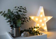 Φυσικό εγχώριο ντεκόρ eco με τα πράσινα φύλλα και καμμένος αστέρι στο tra Στοκ Εικόνες