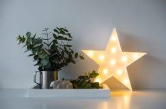 Φυσικό εγχώριο ντεκόρ eco με τα πράσινα φύλλα και καμμένος αστέρι στο tra Στοκ εικόνα με δικαίωμα ελεύθερης χρήσης