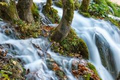 Φυσικό εθνικό πάρκο λιμνών Plitvice στην Κροατία Στοκ Φωτογραφίες