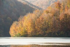 Φυσικό εθνικό πάρκο λιμνών Plitvice στην Κροατία Στοκ εικόνες με δικαίωμα ελεύθερης χρήσης