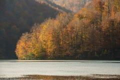 Φυσικό εθνικό πάρκο λιμνών Plitvice στην Κροατία Στοκ φωτογραφία με δικαίωμα ελεύθερης χρήσης