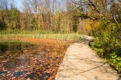 Φυσικό εθνικό πάρκο λιμνών Plitvice στην Κροατία Στοκ φωτογραφίες με δικαίωμα ελεύθερης χρήσης