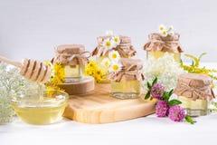 Φυσικό ελαφρύ υγρό μέλι Μέλι στα βάζα και dipper γυαλιού Στοκ φωτογραφία με δικαίωμα ελεύθερης χρήσης