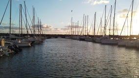 Φυσικό ηλιοβασίλεμα στη μαρίνα με πολλά sailboats που δένονται και που χαϊδεύονται από τον αέρα που τινάζει τις σημαίες απόθεμα βίντεο