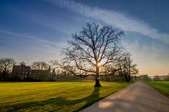 Φυσικό ηλιοβασίλεμα 16 της Γερμανίας τοπίων στοκ φωτογραφίες