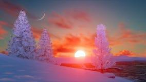 Φυσικό ηλιοβασίλεμα πέρα από τα χιονώδη χειμερινά έλατα ελεύθερη απεικόνιση δικαιώματος