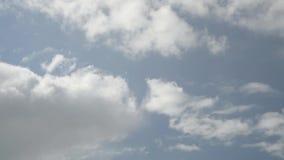 φυσικό καλοκαίρι ουρανών σχεδίου ανασκόπησης απόθεμα βίντεο