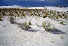 φυσικό λευκό άμμων Στοκ Εικόνες