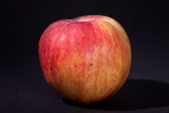Φυσικό μεγάλο μήλο στιλβωτικής ουσίας σε ένα μαύρο υπόβαθρο Στοκ φωτογραφίες με δικαίωμα ελεύθερης χρήσης
