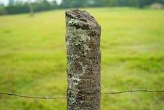 Φυσικό ξύλινο Fencepost με οδοντωτό - καλώδιο στοκ φωτογραφία με δικαίωμα ελεύθερης χρήσης