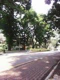 Φυσικό πάρκο Στοκ φωτογραφία με δικαίωμα ελεύθερης χρήσης