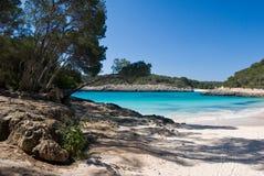 Φυσικό πάρκο Mondragon του των Βαλεαρίδων $νήσων νησιού της Μαγιόρκα στοκ φωτογραφία
