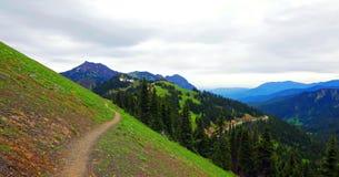 Φυσικό πολιτεία της Washington φύσης - κορυφογραμμή Klahhane, ολυμπιακό εθνικό πάρκο στοκ φωτογραφία με δικαίωμα ελεύθερης χρήσης