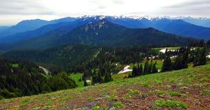 Φυσικό πολιτεία της Washington φύσης - κορυφογραμμή Klahhane, ολυμπιακό εθνικό πάρκο στοκ φωτογραφίες
