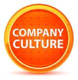 Φυσικό πορτοκαλί στρογγυλό κουμπί πολιτισμού επιχείρησης απεικόνιση αποθεμάτων