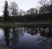 Φυσικό πορτρέτο των δέντρων που απεικονίζεται στο νερό Στοκ Φωτογραφίες