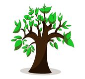 Φυσικό πράσινο δέντρο με τα φύλλα r διανυσματική απεικόνιση