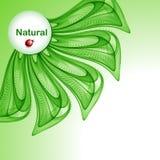 Φυσικό πράσινο υπόβαθρο με το αφηρημένο λουλούδι και ladybug Στοκ εικόνα με δικαίωμα ελεύθερης χρήσης