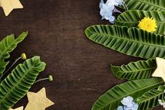 Φυσικό πλαίσιο με τα χρυσά αστέρια και τα τροπικά λουλούδια στη φτέρη Στοκ Εικόνα