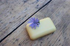 Φυσικό ραδίκι σαπουνιών και λουλουδιών Στοκ φωτογραφία με δικαίωμα ελεύθερης χρήσης