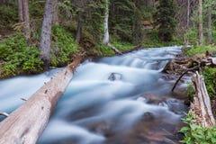 Φυσικό ρεύμα βουνών του Κολοράντο Στοκ φωτογραφία με δικαίωμα ελεύθερης χρήσης