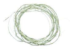 Φυσικό σκοινί Στοκ Εικόνες