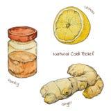 Φυσικό σύνολο watercolor ανακούφισης κρύου και γρίπης Ελεύθερη απεικόνιση δικαιώματος