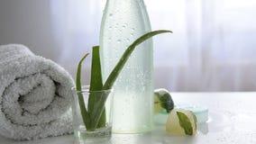 Φυσικό σώμα, προϊόν προσοχής προσώπου με aloe τις εγκαταστάσεις της Βέρα για το ευαίσθητο δέρμα