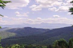 Φυσικό τοπίο βουνών Bukovel Στοκ Εικόνες