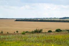 Φυσικό τοπίο ενός αγροτικού τομέα Στοκ Εικόνες