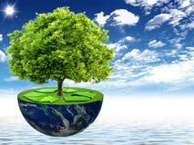 Φυσικό τοπίο. οικολογική έννοια Στοκ Εικόνες