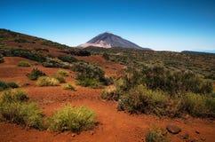 Φυσικό τοπίο στο εθνικό πάρκο Teide, Tenerife, καναρίνι Στοκ Φωτογραφίες