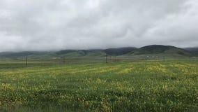 Φυσικό τοπίο της απόμακρης άποψης στοκ φωτογραφία με δικαίωμα ελεύθερης χρήσης
