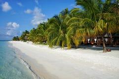 Φυσικό τοπίο της ηλιόλουστης τροπικής ωκεάνιας ακτής παραλιών με την άσπρη άμμο, τους φοίνικες καρύδων και το μπλε ουρανό Ειδυλλι στοκ φωτογραφίες με δικαίωμα ελεύθερης χρήσης