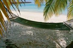 Φυσικό τοπίο της ηλιόλουστης τροπικής ωκεάνιας παραλίας με την άσπρη άμμο, τους φοίνικες και μια αιώρα Ειδυλλιακό τοπίο του παραθ στοκ φωτογραφία