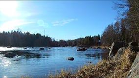 Φυσικό τοπίο της Κύμης στη Φινλανδία, γρήγορη κίνηση νερού ποταμού κατά μήκος του παράκτιου δάσους φιλμ μικρού μήκους