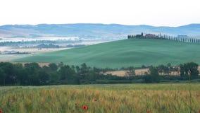 Φυσικό τοπίο του πράσινου λοφώδους Tuscan τομέα το πρωί θερινή περίοδο απόθεμα βίντεο