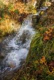 Φυσικό τοπίο φθινοπώρου βουνών με τον ποταμό και τους καταρράκτες, Π στοκ φωτογραφίες με δικαίωμα ελεύθερης χρήσης
