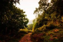 Φυσικό τοπίο φθινοπώρου Στοκ Εικόνες