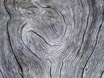 Φυσικό υπόβαθρο για το shabby κομψό σχέδιο Στοκ Φωτογραφίες