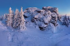 Χιονώδες τοπίο Χριστουγέννων r Χειμερινό δάσος στο χιόνι Πανσέληνος και έναστρος ουρανός στοκ εικόνα με δικαίωμα ελεύθερης χρήσης