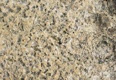 Φυσικό υπόβαθρο φωτογραφιών σύστασης πετρών σύσταση πετρών ηφαιστειακή Στοκ εικόνα με δικαίωμα ελεύθερης χρήσης