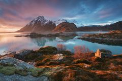 Φυσικό φιορδ στα νησιά Lofoten, Reine, Νορβηγία Ήρεμο νερό Διάσημο τουριστικό αξιοθέατο στα νησιά Lofoten στοκ φωτογραφία με δικαίωμα ελεύθερης χρήσης