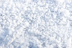 φυσικό χιόνι ανασκόπησης Στοκ φωτογραφία με δικαίωμα ελεύθερης χρήσης